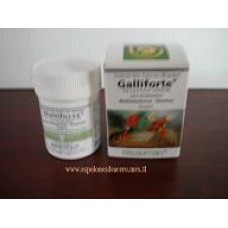 Galliforte