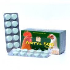 AMTYL 500 (1 BLISTER OF 10 TABLETS)